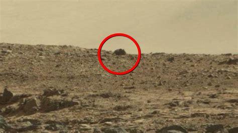 Imagenes Insolitas Marte | 191 un rat 243 n gigante es encontrado en marte curiosidades y