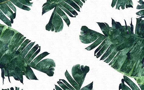 bananas leaf wallpaper banana leaf vancouver mom