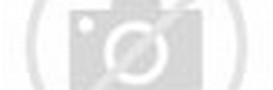 Animated Dancing Hamsters