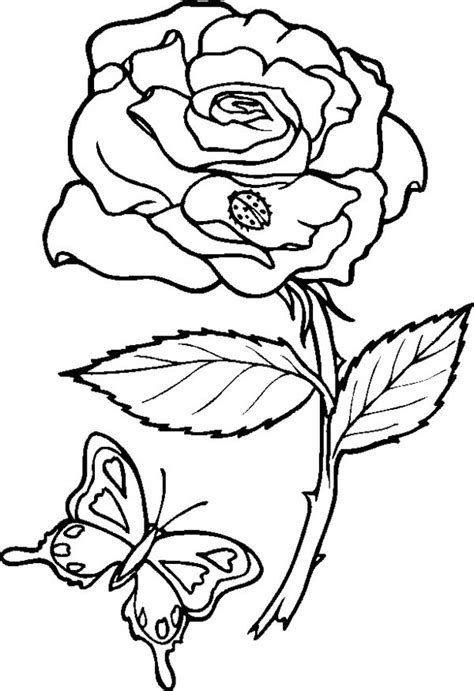 coloring pages of roses and butterflies rose and butterfly coloring page download print online