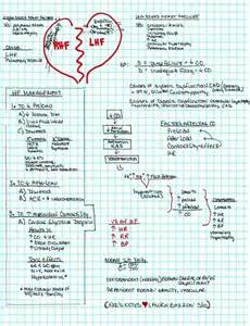 Right Sided Heart Failure Pathophysiology Pictures