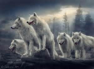 Wolfs by zedlord art on deviantart