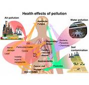 Health Effects Of Pollutionpng  Wikipedia The Free