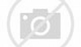 Red Volcom Logo
