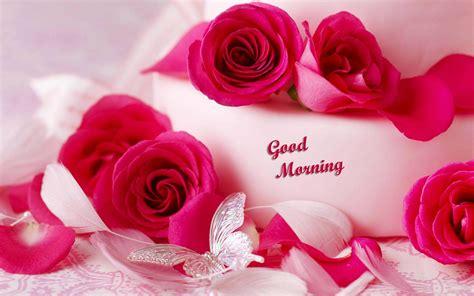 wallpaper flower romantic romantic good morning beautiful quotes quotesgram