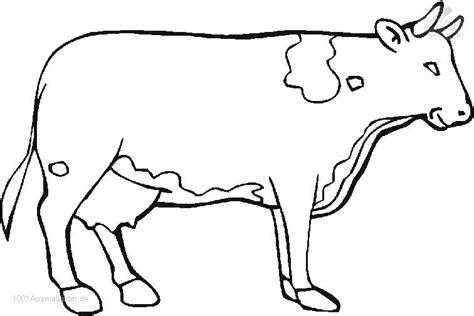 ausmalbild kuh