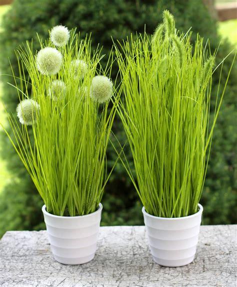 Pflanzen Deko by Pflanze Im Topf Kunstblume Kunstpflanze Deko Pflanze