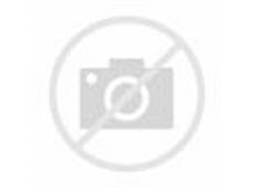 process and pitfalls in writing information visualization research papers Online Term Papers