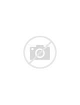 Photos of Screen Door Security Gates