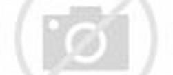 Gambar Pemandangan Bunga Sakura Yang Indah