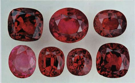14 82 Ct Blood Ruby ruby value price and jewelry information
