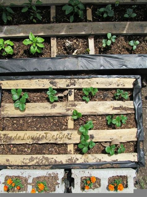 diy pallet garden bed pin by meredith on garden