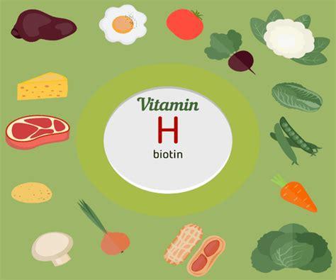 vitamina b en alimentos 10 alimentos m 225 s ricos en vitamina b8 o biotina