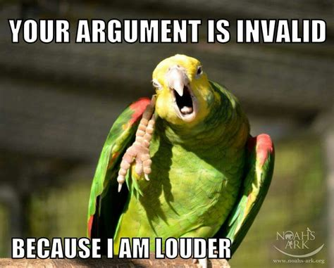 Meme Bird - your argument is invalid because i am louder and a parrot