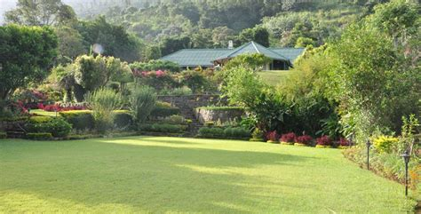 sri lanka bungalows viharagala estate bungalow bungalow haputale sri lanka