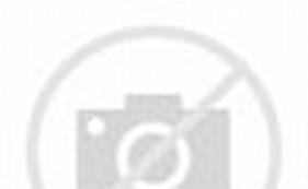 Amazon Box Robot