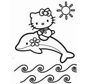 Hello Kitty Riding On A Dolphin