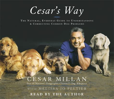 cesar the whisperer the whisperer images cesar millan wallpaper and background photos 25204431