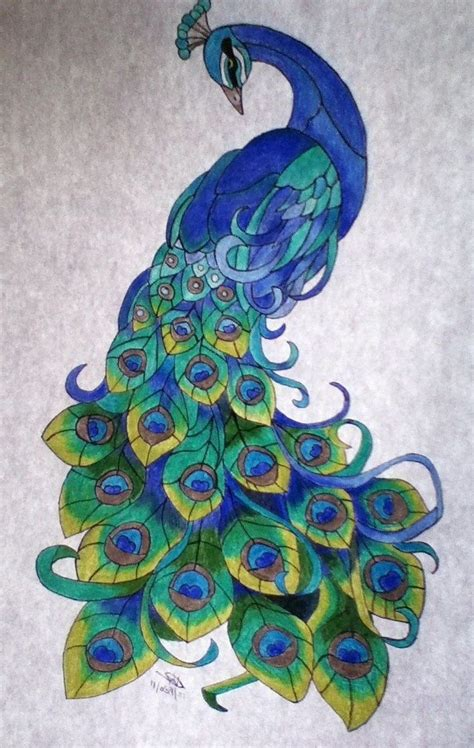 color peacock peacock drawing color at getdrawings free for