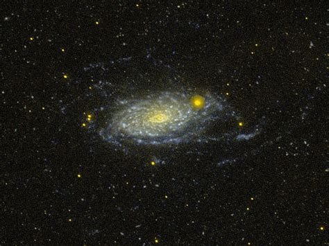sunflower galaxy spitzer m63 sunflower galaxy glows with infrared light