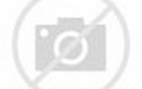 Spring Beautiful Nature Waterfall Background