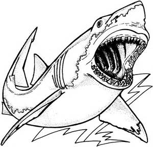 Great White Shark Coloring Pages sketch template