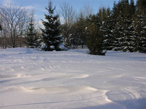 image gallery snowy yard