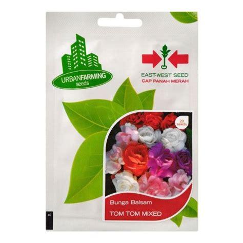 Benih Bunga benih panah merah bunga balsam tom tom mix 20 biji