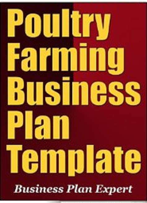 poultry business plan template poultry farming business plan in nigeria sle template