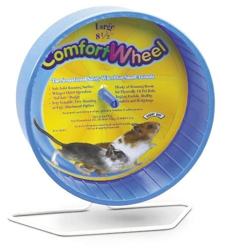 comfort wheel for hedgehogs 17 best images about hedgehogs on pinterest cavy