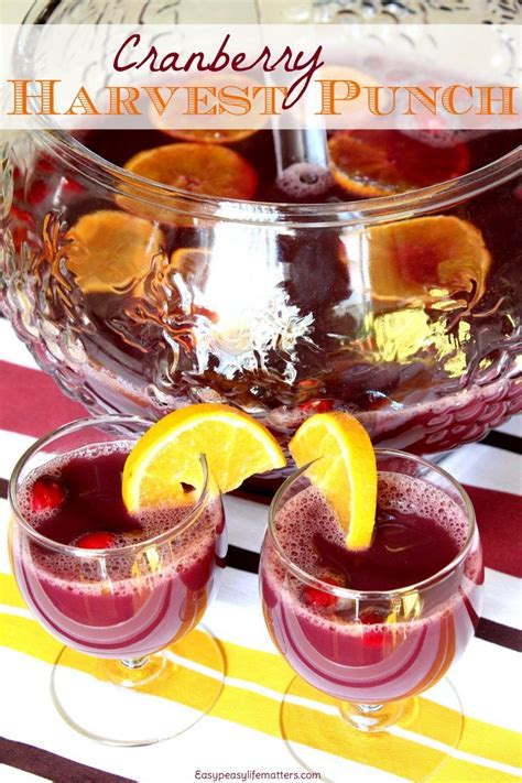 cranberry harvest punch drinks alcoholic punch recipes