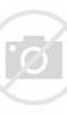 Gambar Kartun Ibu Hamil