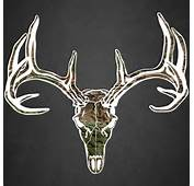 Hunting Stickers Deer Skull Vinyl Decal Truck Car Window Buck Hunter