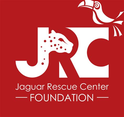 adoption centers jaguar rescue center foundation home