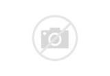 Araignée... à colorier