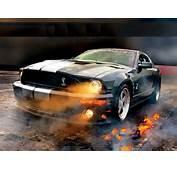 Mustang Cobra  Imagenes De Carros