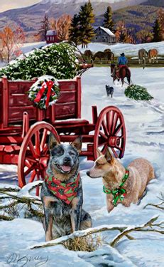 shop for cards australian cattle dog christmas cards