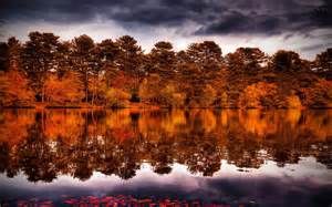 Autumn forest trees shore reflection fall sky beautiful lake nature
