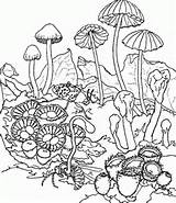 trippy colouring pages