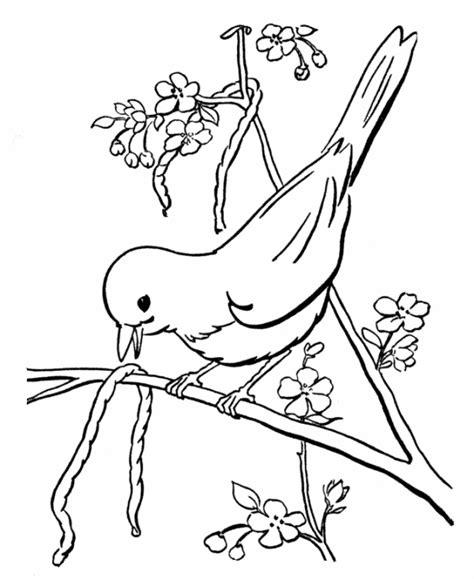 bird eating coloring page copaci infloriti primavara planse de colorat planse de