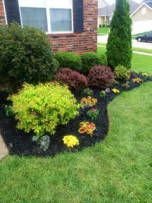 black landscaping beautiful flowerbed black mulch made a big difference