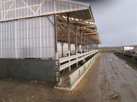 The Feed Shed by 17 Best Images About The Cattle Barn On Indoor Arena Stables And Feeder Cattle