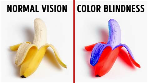 how color blind see how color blind see the world