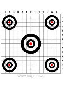 Printable targets cassety hollow rod amp gun
