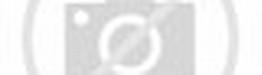 ... , Organ / Alat Reproduksi Dalam pada Wanita : Struktur dan Fungsi