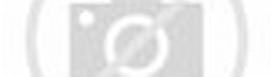 ... Gambar Alat Reproduksi Pria Dan Wanita ~ Jun 2016 biodiversity facts