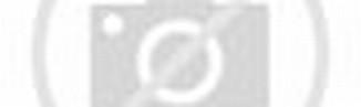 Download image Organ Alat Reproduksi Dalam Pada Wanita Struktur Dan ...