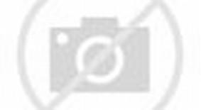Shadow Martial Arts Fighting