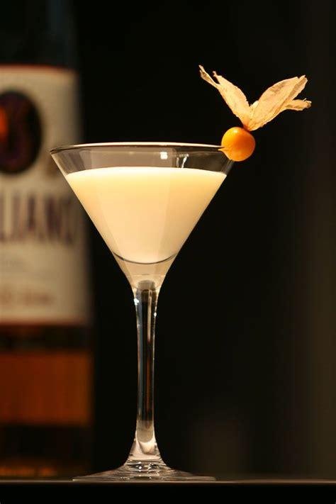 drink garnish best 25 cocktail garnish ideas on pinterest gin elderflower grapefruit recipes indian and