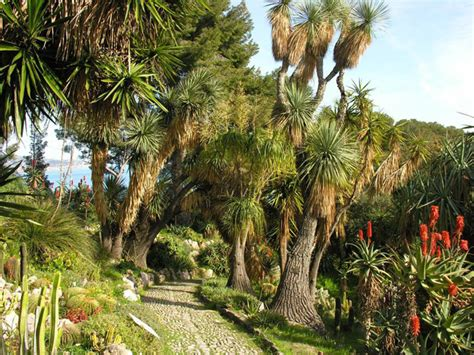 giardino botanico montecarlo giulio einaudi at the hanbury botanical gardens italian ways